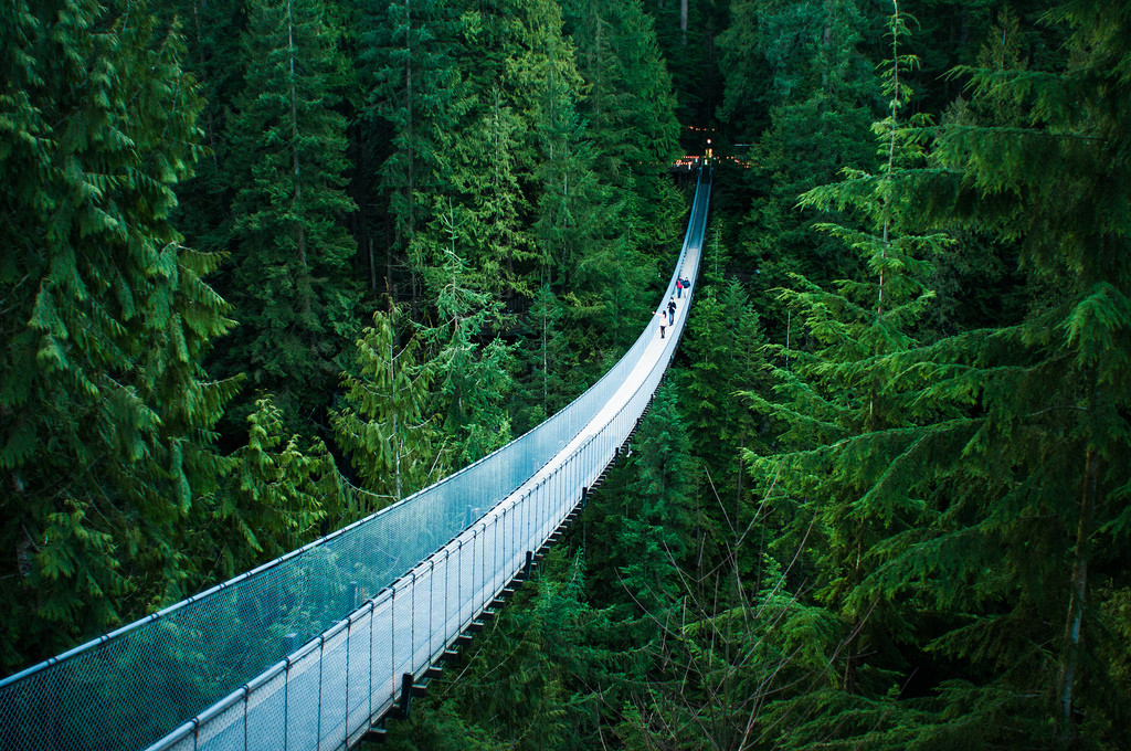 Capilano Suspension Bridge by Flickr user Michelle Lee