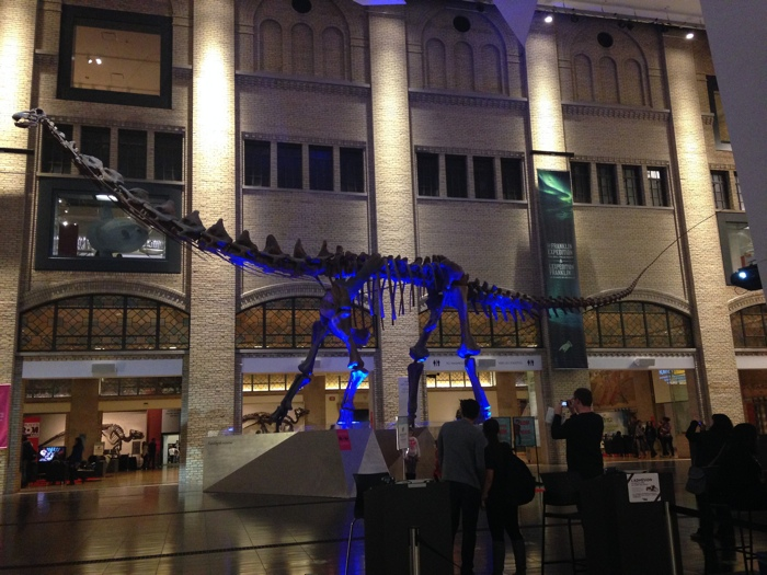 Dinosaur at the Royal Ontario Museum in Toronto - photo credit flickr user Steven Depolo